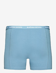 Björn Borg - SHORTS SAMMY BB NORDIC CAMO - underwear - skyway - 1
