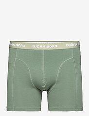 Björn Borg - SHORTS SAMMY SOLIDS - underwear - black beauty - 4