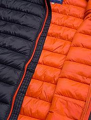 Blend - Outerwear - vestes matelassées - dark navy - 5