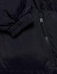 Blend - Outerwear - padded jackets - dark navy - 5