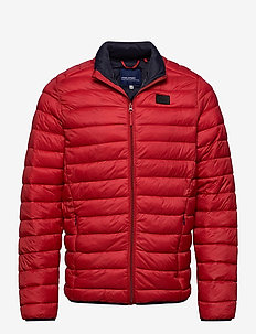 Outerwear - padded jackets - chili pepper