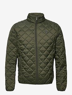 Outerwear - gewatteerd jassen - forest night