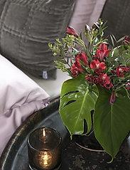 Borås Cotton - Grand - sänglakan - pink - 0