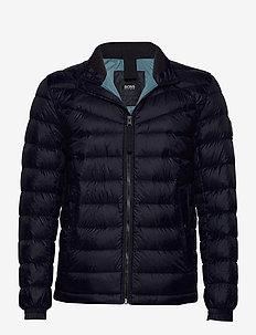 Olido1 - fôrede jakker - dark blue