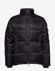 Bruuns Bazaar - Arn Helium Parka - vestes matelassées - black - 2