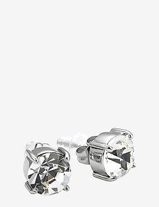 Sence Crystal Earring Clear/Steel - SILVER