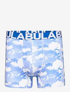 PRINTED BOXER - undertøj - print1