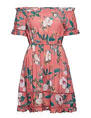 Kelly beach dress - DAIQUIRI ROSE