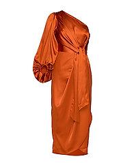 Leontine dress - SPICED HONEY