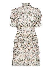 Harlow dress - FRENCH ROSE WHITE