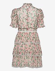 By Malina - Harlow dress - cocktailklänningar - watercolor sage - 2