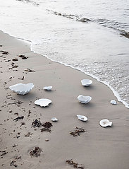 ByOn - Bowl Shell S - tarjoilukulhot - white - 1