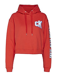 SLEEVE LOGO CROPPED HOODIE - TOMATO