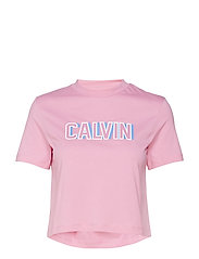 CALVIN LOGO CROPPED TEE - WILD ORCHID