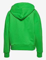 Calvin Klein Jeans - MICRO BRANDING HOODIE - gensere og hettegensere - acid green - 1