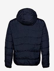 Calvin Klein Jeans - PADDED JACKET - donsjassen - night sky - 1