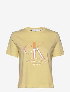 IRIDESCENT CK STRAIG - logo t-shirts - mimosa yellow