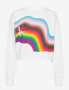 DIST RAINBW CR - sweatshirts - bright white