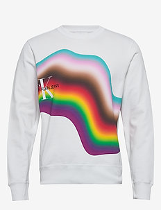 DIST RAINBOW R - sweatshirts - bright white