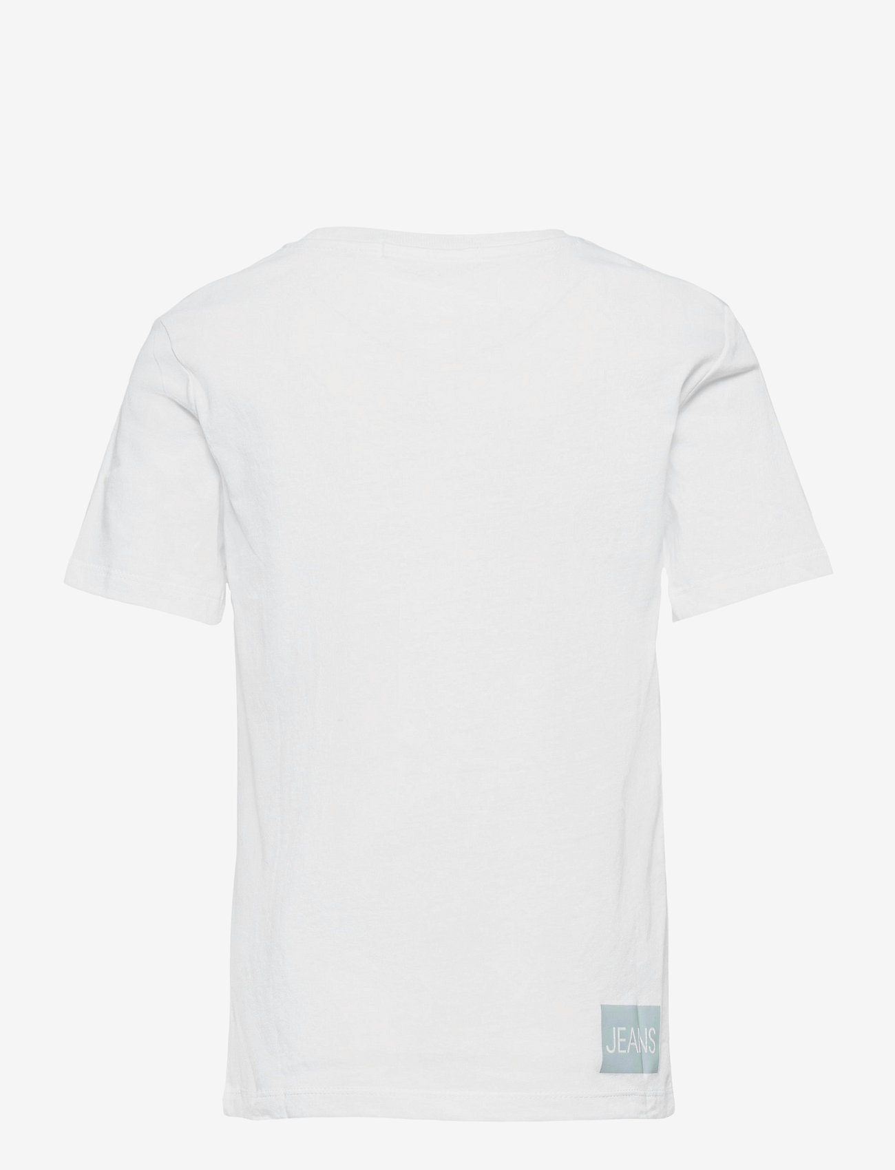 Calvin Klein - INSTITUTIONAL SS T-SHIRT - t-shirts - bright white / blue - 1