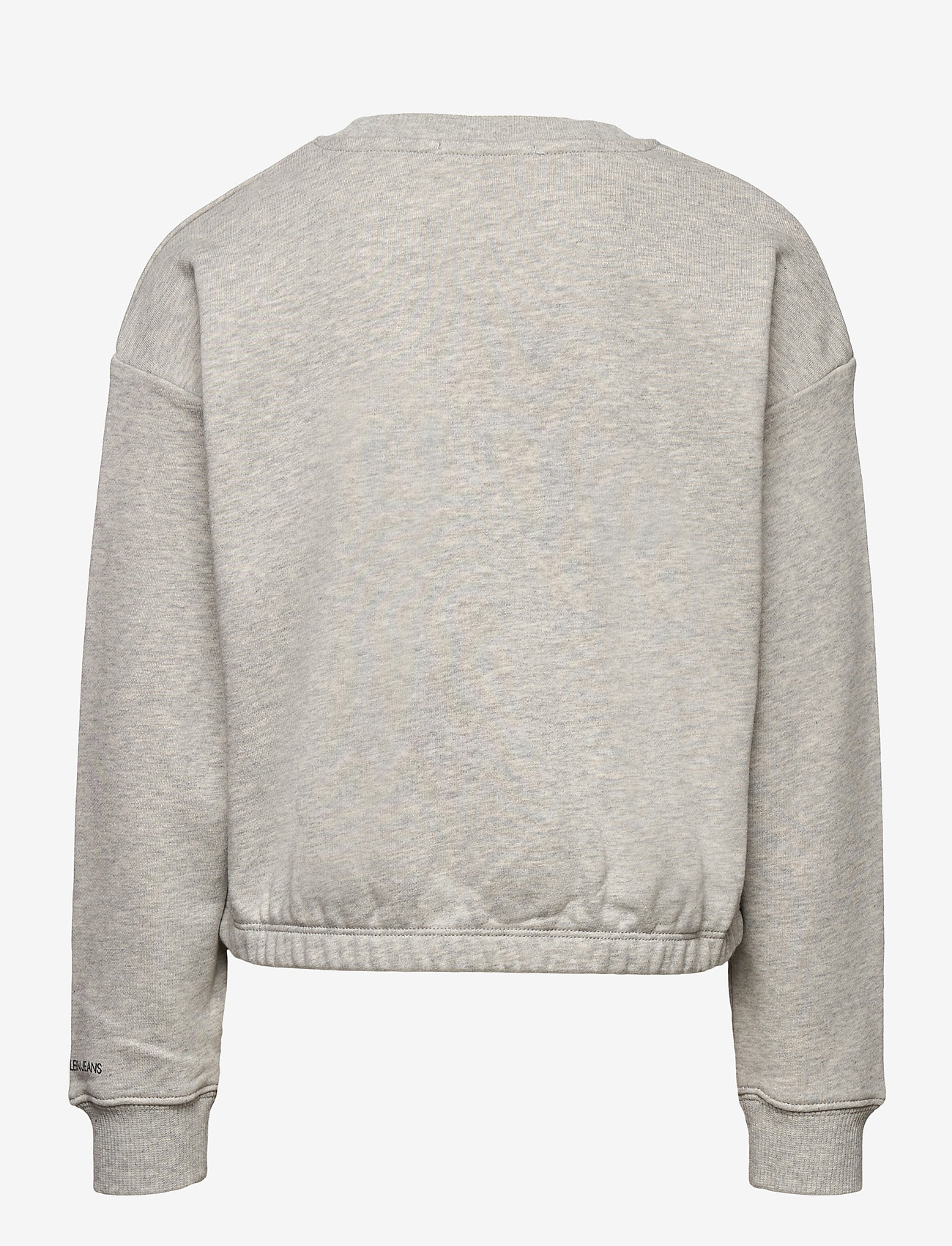 Calvin Klein - LOGO BOXY SWEATSHIRT - sweatshirts - light grey heather - 1