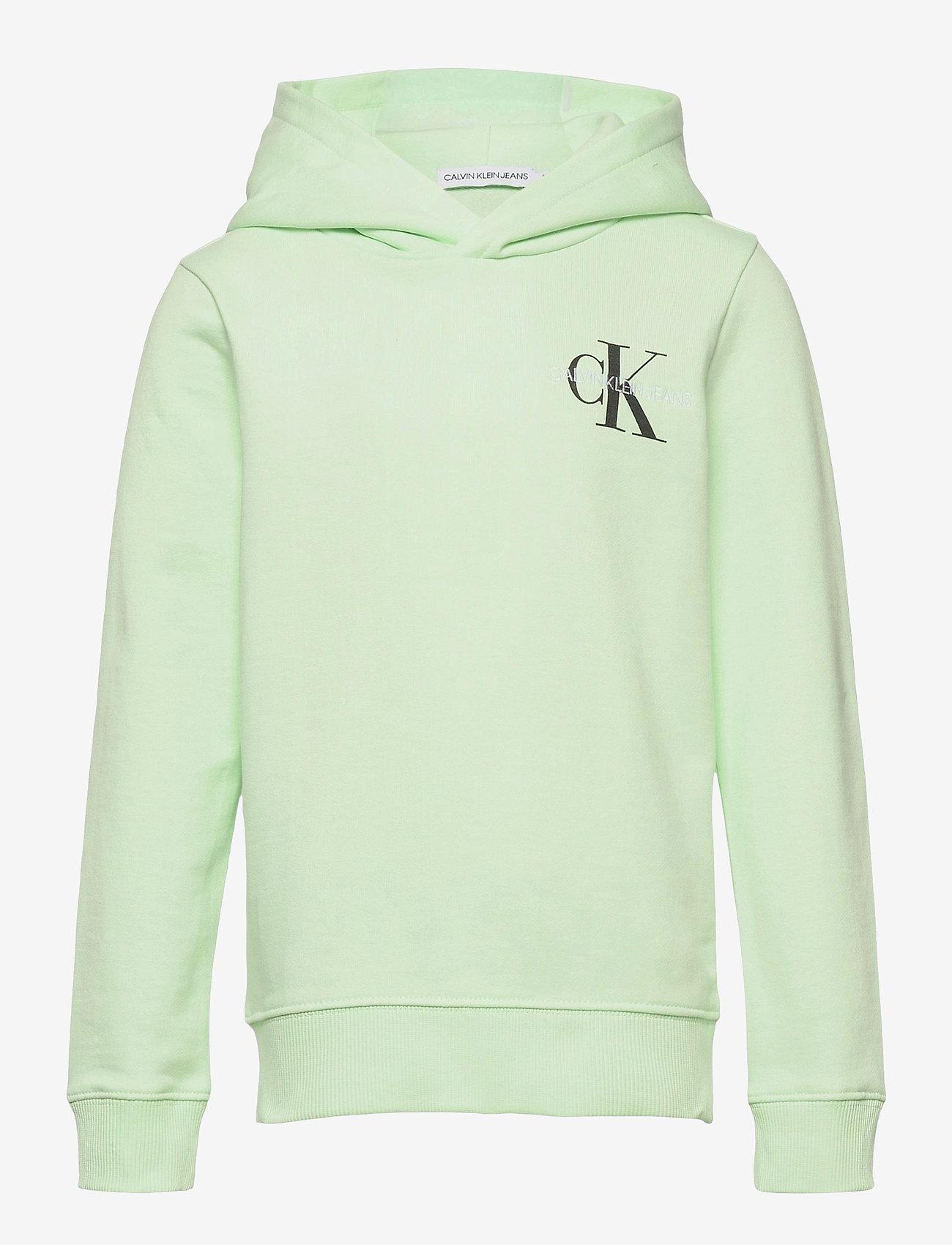 Calvin Klein - SMALL MONOGRAM HOODIE - kapuzenpullover - dew green - 0