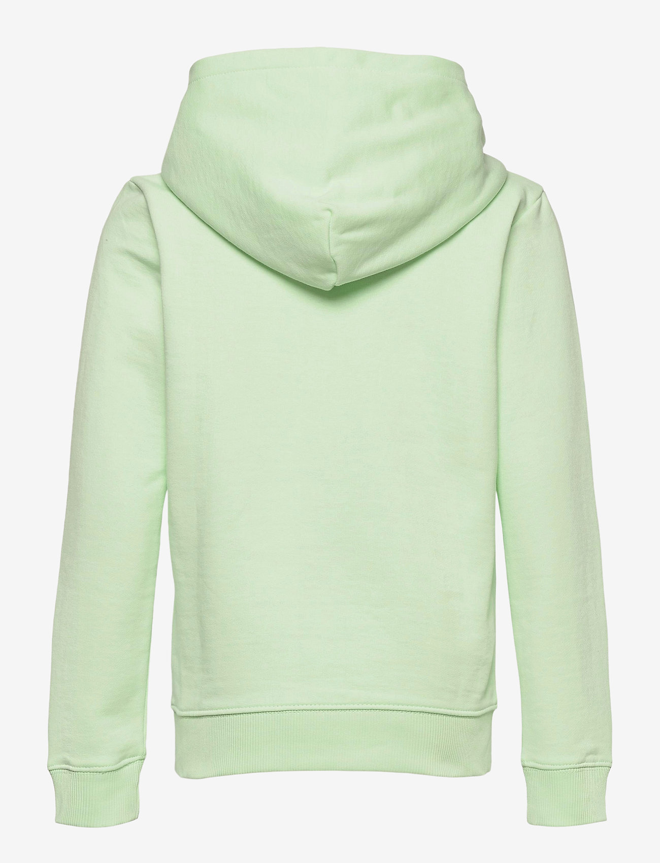 Calvin Klein - SMALL MONOGRAM HOODIE - kapuzenpullover - dew green - 1