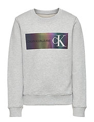 REFLECTIVE LOGO SWEATSHIRT - LIGHT GREY HEATHER