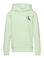 SMALL MONOGRAM HOODIE - DEW GREEN