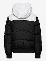 Calvin Klein - COLOUR BLOCK PUFFER JACKET - gewatteerde jassen - ck black - 2