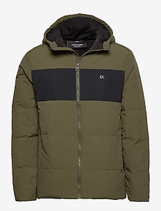 DOWN JACKET - sports jackets - grape leaf