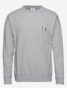 L/S SWEATSHIRT - swetry - grey heather