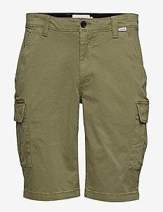 GARMENT DYED CARGO SHORTS - cargo shorts - delta green