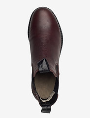 Canada Snow - Dawis - chelsea boots - brown - 3