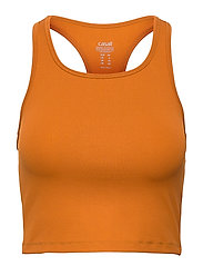 Bold Rib Crop Tank - HAZEL BROWN
