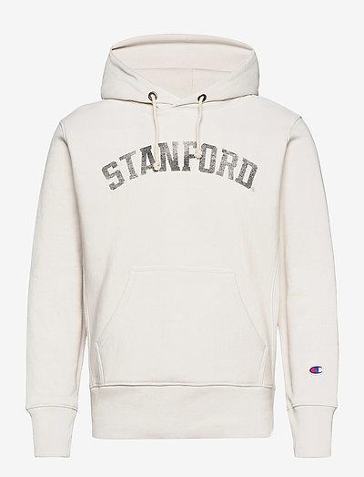 Hooded Sweatshirt - hoodies - vaporous gray