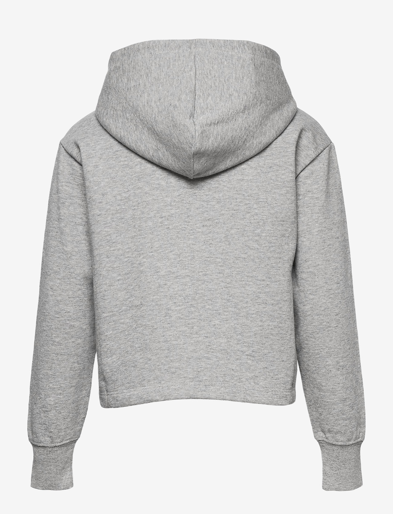 Champion - Hooded Sweatshirt - hoodies - gray melange light - 1