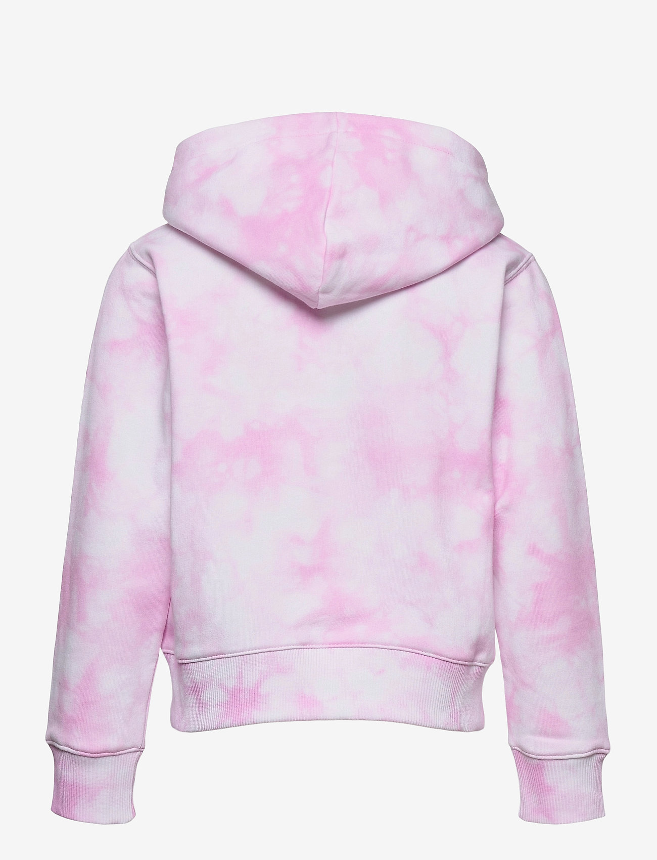 Champion - Hooded Sweatshirt - hoodies - white al (wht) a - 1