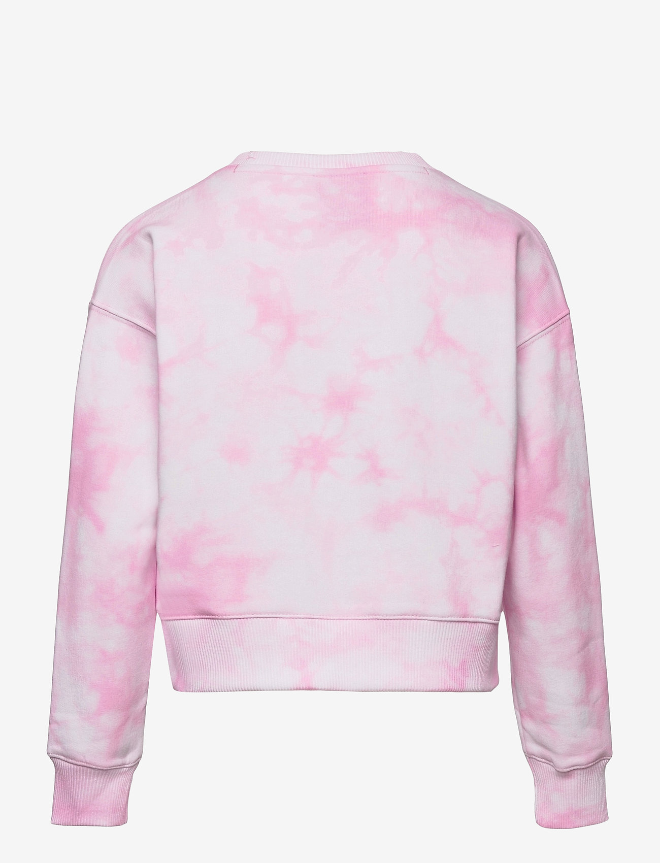 Champion - Crewneck Sweatshirt - sweatshirts - white al (wht) a - 1