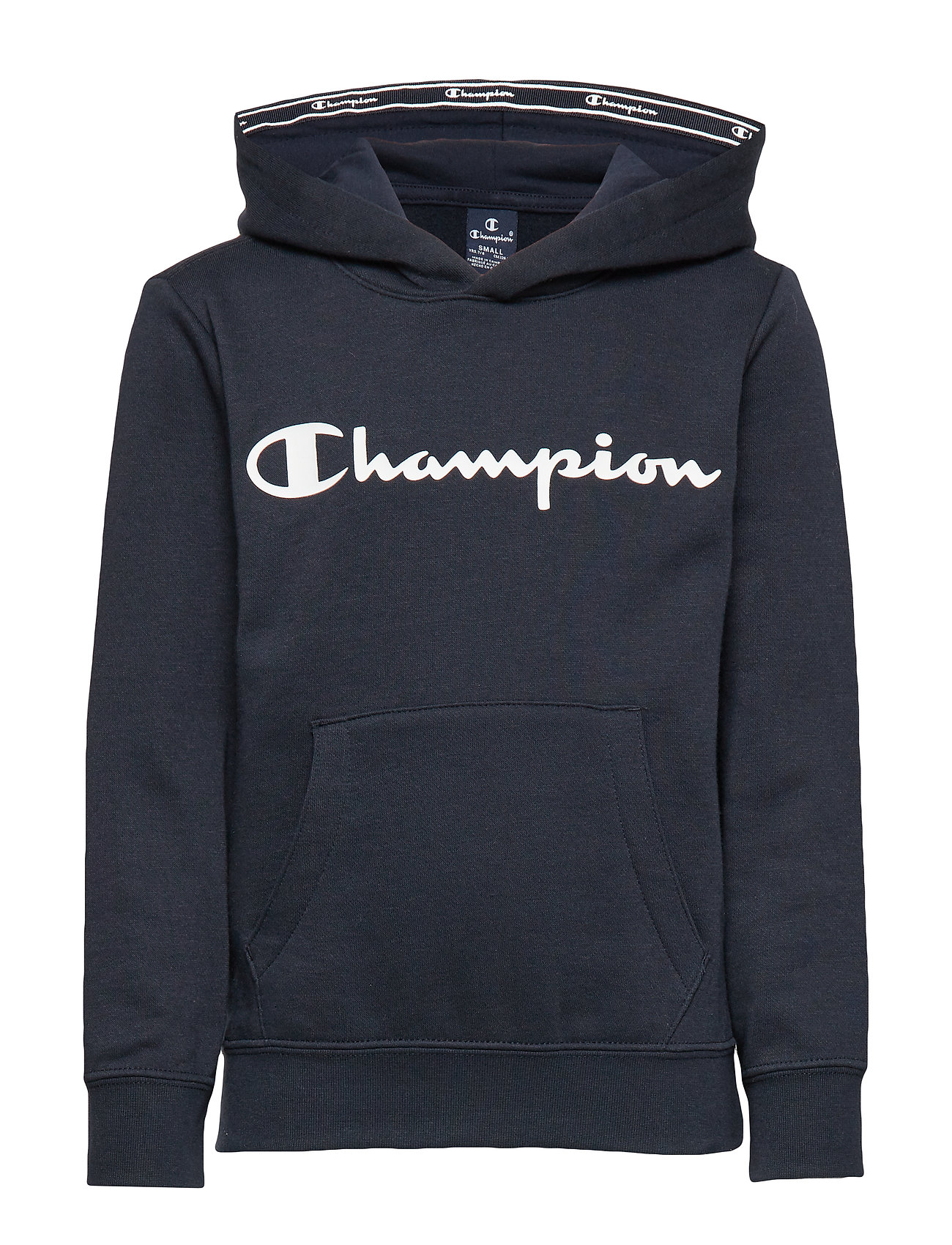 Champion Hooded Sweatshirt - SKY CAPTAIN