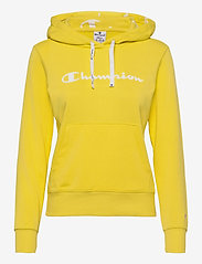 Hooded Sweatshirt - AURORA