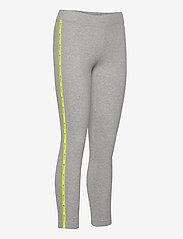 Champion - Leggings - leggings - gray melange light - 3