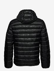 Champion - Hooded Jacket - vestes de sport - black beauty  al (nbk) - 2