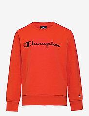 Champion - Crewneck Sweatshirt - sweatshirts - fiesta - 0