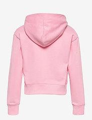 Champion - Hooded Sweatshirt - sweatshirts - candy pink - 1