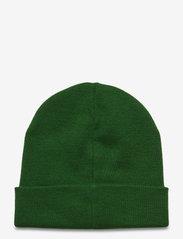 Champion - Beanie Cap - bonnet - greener pastures - 1