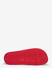 Champion - Sandal DAYTONA - pool sliders - ribbon red - 4