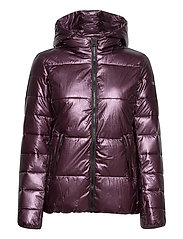 Hooded Polyfilled Jacket - BLACKBERRY WINE