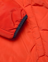 Champion - Hooded Jacket - anoraki - tangerine tango - 3