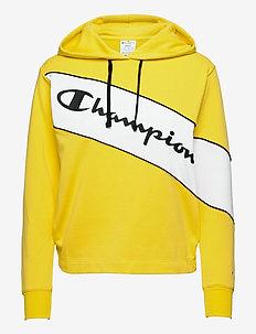 Hooded Sweatshirt - hoodies - aurora